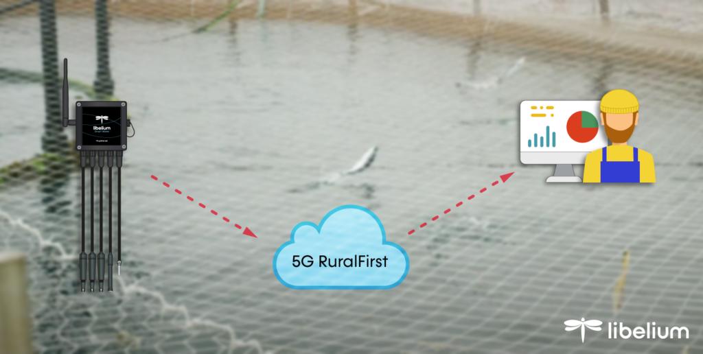 IoT Libelium на рыбной ферме