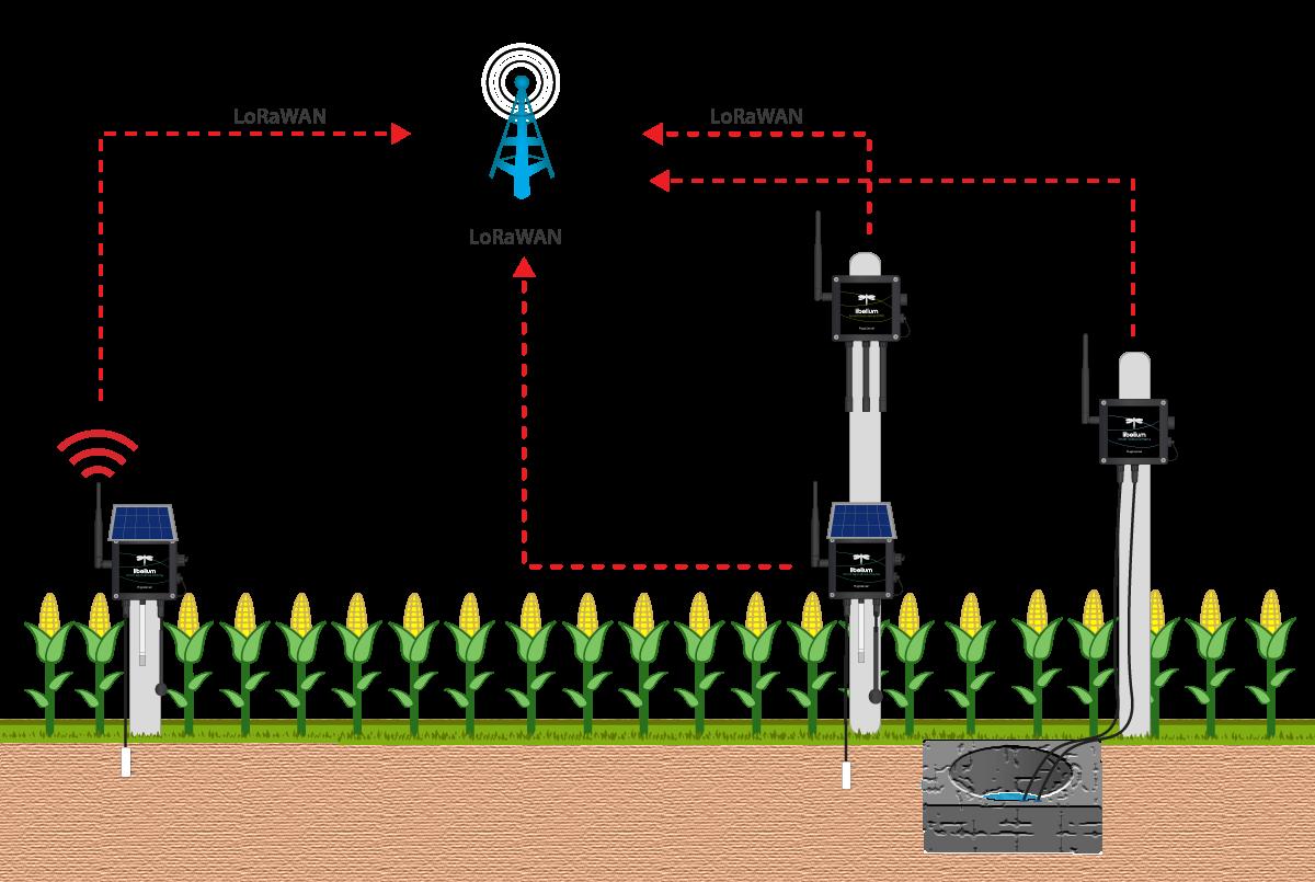diagram-field-monitoring-laboratory