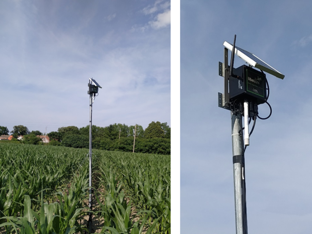 smart-agriculture-xtreme-for-field-monitoring-hungary